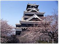 中央区の熊本城